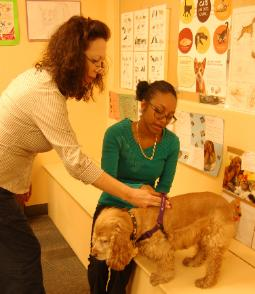 Frania is a licensed pet care technician teacher